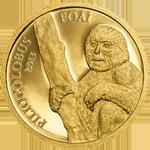 The Luvua Colobus Monkey - Piliocolobus Foai