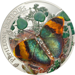 Butterflies in 3D – 2014