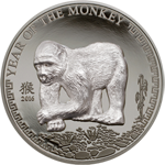 Year of the monkey - silver coin