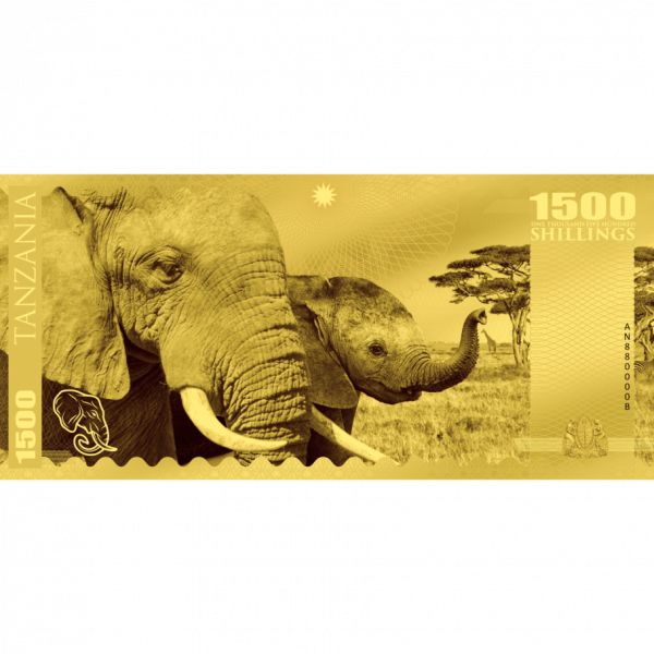 Elephant – Tanzania, CIT Coin Invest Trust AG / B.H. Mayer, 28415