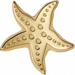 Golden Starfish