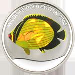 Yellow Fish - Prism