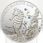 Tuvalu Marine Life - Seahorse