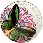Butterflies in 3D – 2012